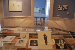 Sala de exposiciones/ Exhibition hall